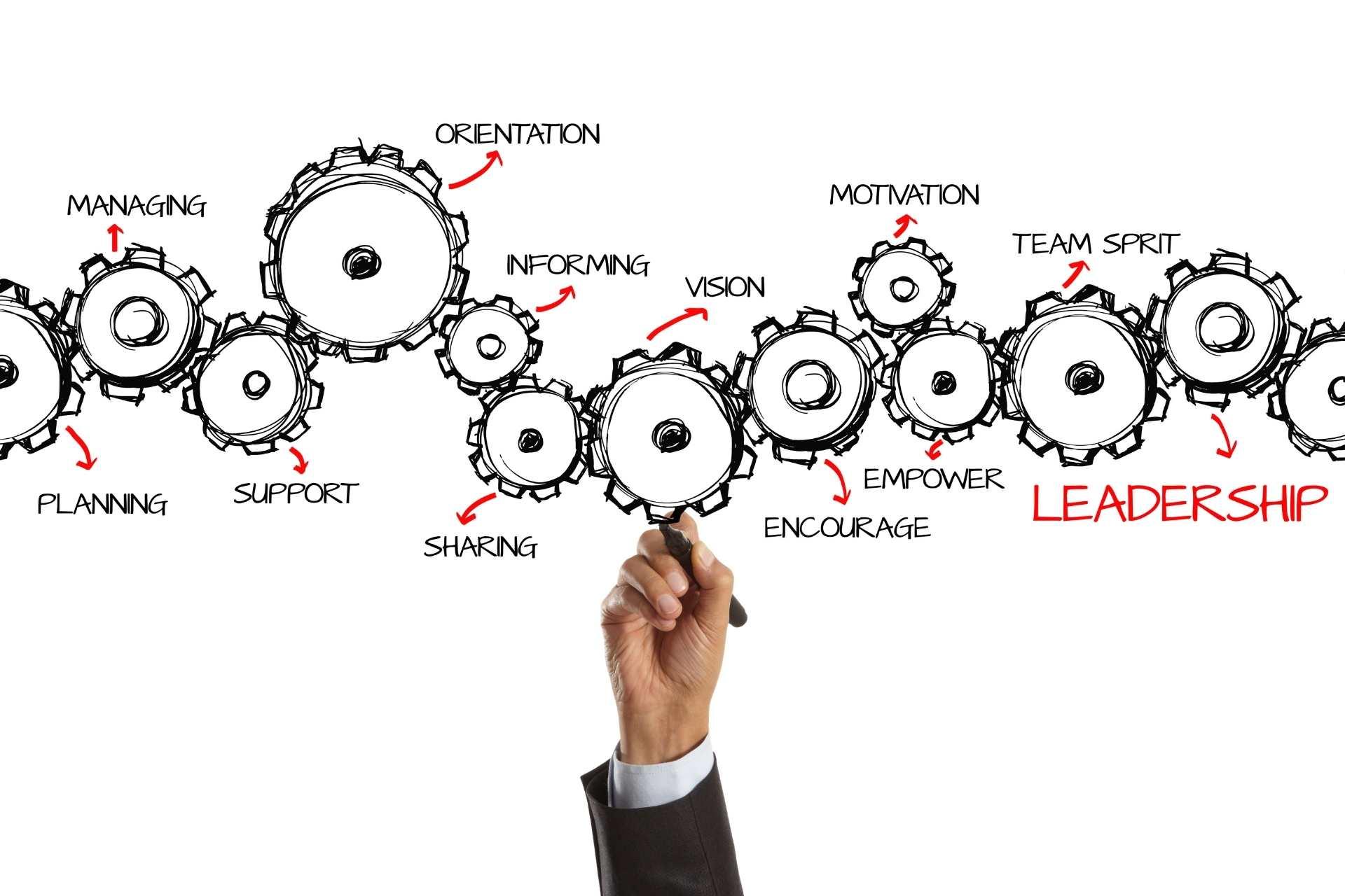 Situationeel Leiderschap model